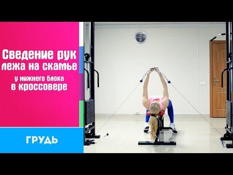 Самые лучшие упражнения для грудных мышц: полный обзор!