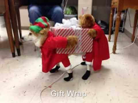 Elf Dog Costume Sale