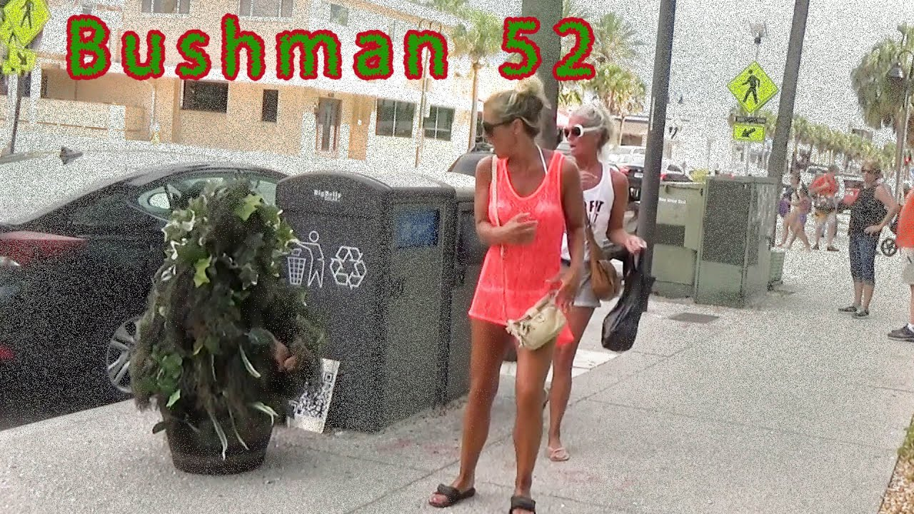 short video bushman 52 a little  cleaning up.