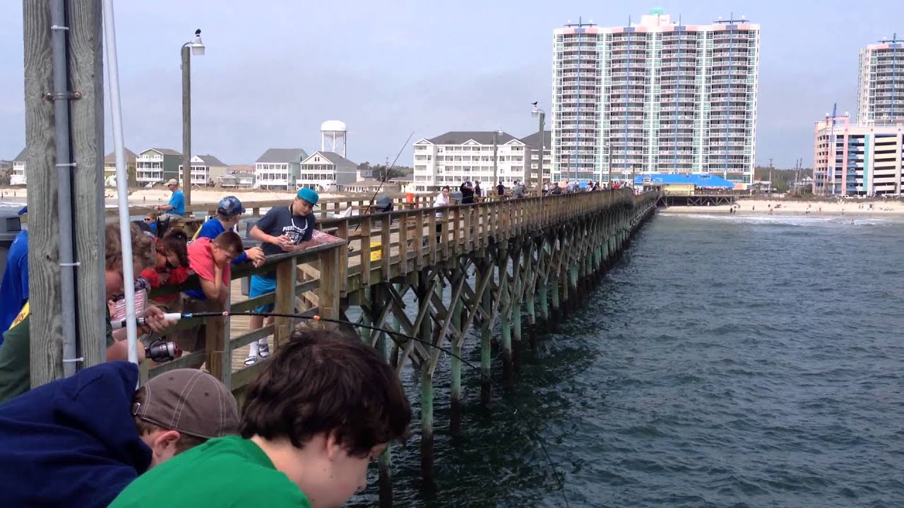 Sting ray north myrtle beach cherry grove peir 2015 youtube for North myrtle beach fishing pier