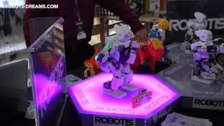 World Maker Faire 2014: DARWIN-MINI Robot