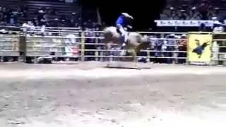 Dragon de Oro vs Ranchero de Oaxaca Rancho lo...