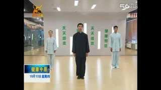 Chen Tai Chi Harmony 13 Form by Chen Bing
