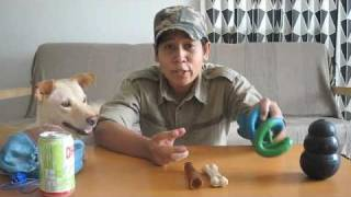 Dog Training: Prevent Your Dog From Chewing Your Stuff