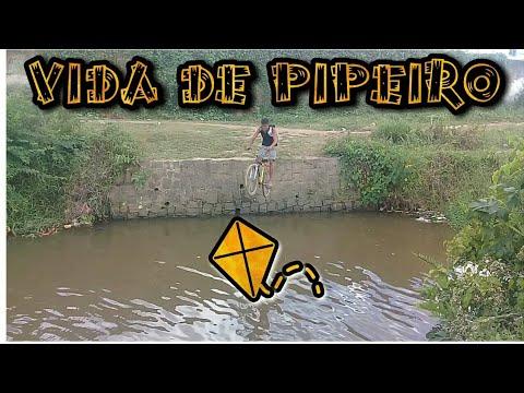 Download VIDA DE  PIPEIRO