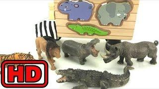 Kid -Kids -Safari Zoo Animals Fun Toys For Kids - Learn Animal Names Video/Melissa doug Wooden Puzz