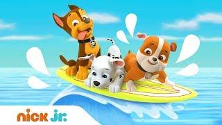Summer Splashy Fun 💦 w/ PAW Patrol's Marshall, Chase, Rubble, Zuma, Rocky & Skye | Nick Jr.