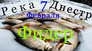 На что Клюет Плотва на что Ловить Плотву в Феврале на Реке Днестр Ловля Плотвы Фидером на Днестре