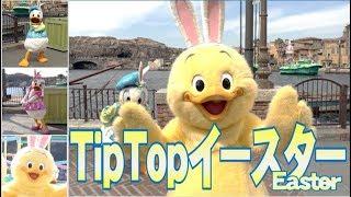 ºoº [スロープ下 完全版] TDS ディズニーシー Tip-Top イースターうさピ