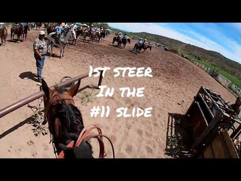 Team Roping 2019 (Arizona) Three Buckles