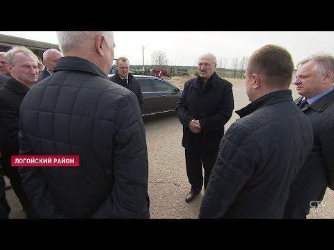 Лукашенко: Чтобы пьяные трактористы не ездили куда попало! Дурница должна быть закончена / Новости