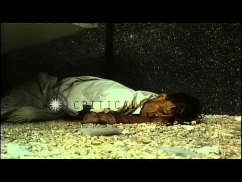 Dead Vietcong on United States Embassy grounds in Saigon, Vietnam. HD Stock Footage