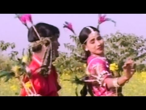 कहाँ जाबे कोचई पान - kanha Jabe Kochai Paan | Dilip Lahariya - Jiya Rani | CG Video Song Collection