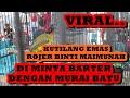 Viral Kutilang Emas Rozer Binti Maimunah Di Minta Barter Dengan Murai Batu  Mp3 - Mp4 Download