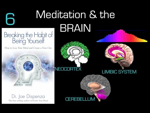 Dr Joe Dispenza Chapter 6 Review of Breaking the Habit of Being Yourself - Meditation & the Brain