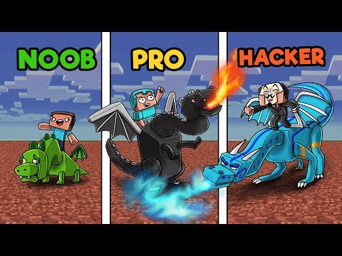 Minecraft - HOW TO TRAIN YOUR DRAGON! (NOOB vs PRO vs HACKER) thumbnail