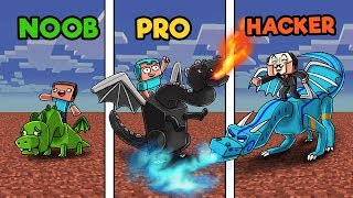 Minecraft - HOW TO TRAIN YOUR DRAGON! (NOOB vs PRO vs HACKER)