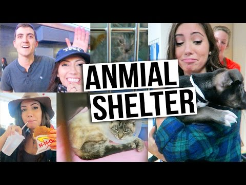 LEAP YEAR DAY: Volunteering @ Animal Shelter & PHIL IS BACK!!