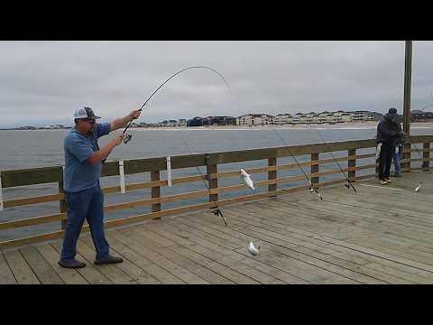 5-26-20 - Seaview Fishing Pier - Fishing Report