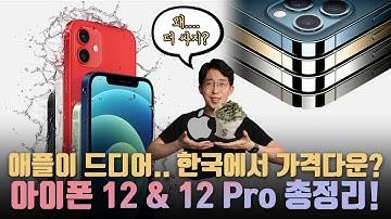 애플이 드디어.. 한국에서 가격 다운? 애플의 아이폰 12&12 Pro 발표 총정리! 미니의 무게는 혁신적