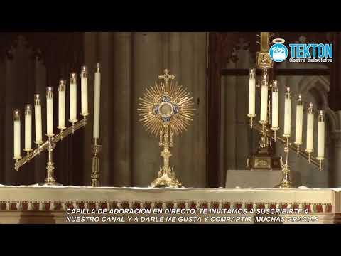 Capilla de Adoración Eucarística en vivo (en directo) // Eucharistic Adoration Chapel (Live)