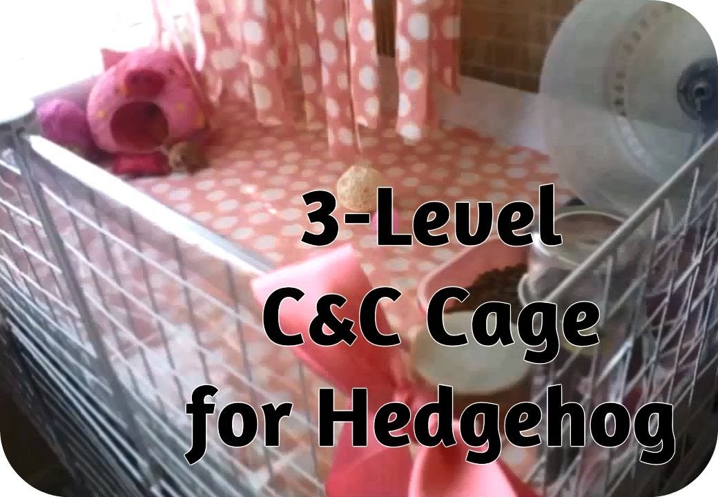 Hedgehog cage tour how to build a c c cage for hedgehog for Making a c c cage