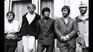 The Beach Boys We