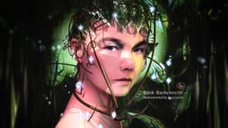 Björk - Bachelorette (Instrumental)