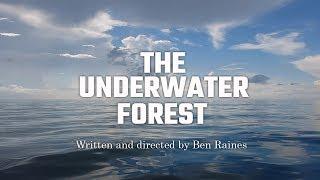 The Underwater Forest