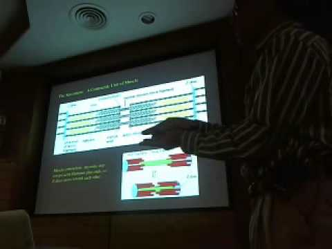 Bill Saxton (1) - Motor Proteins-biophysical characteristics and force generation mechanisms