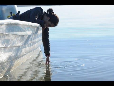 El sueño de Lu - Trailer Oficial - Español Latino - Full HD