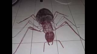 Ant wire sculpture