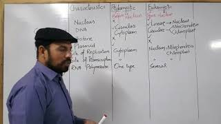 Differences between prokaryotic and Eukaryotic Cell Part 1