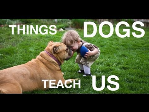 The Things That Dogs Teach Us (VIDEO)