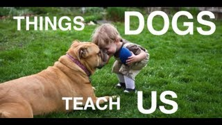 Gambar cover Things Dogs Teach Us