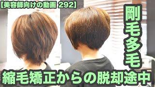 【美容師向けの動画 292】「剛毛 多毛」縮毛矯正からの脱却途中 japanese haircuts for professionals