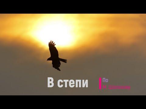Диктант по русскому языку.  9 класс.  В степи. #диктант9класс #диктант