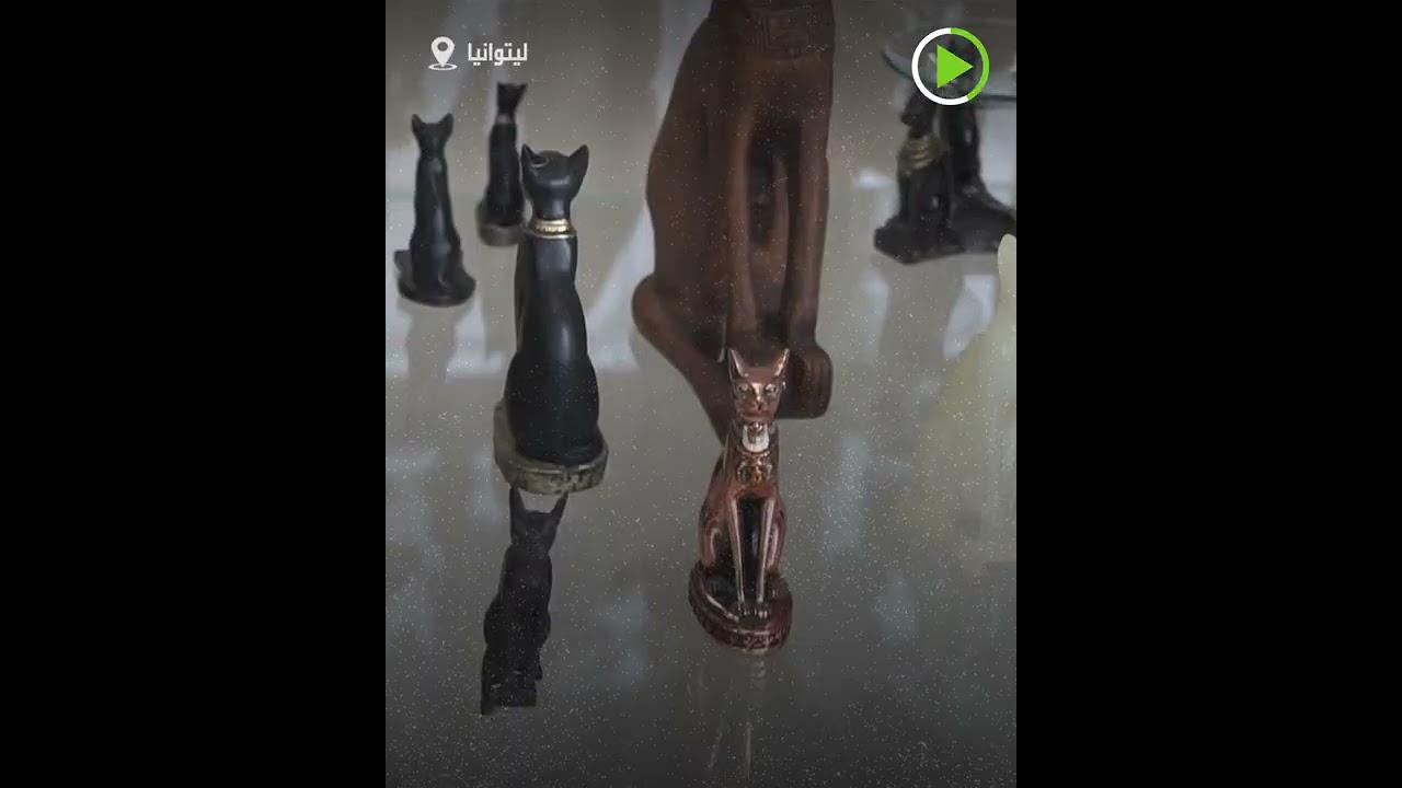 متحف القطط  - نشر قبل 32 دقيقة