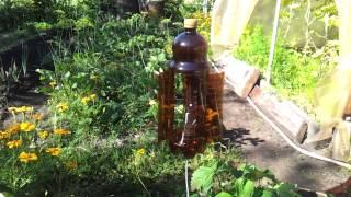 Вертушка из пластиковой бутылки, отпугивание птиц и кротов