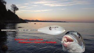 Рыбалка на Чёрном море Рокфишинг с берега на бомбарду
