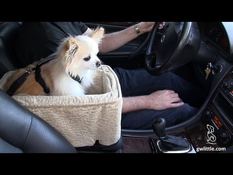 dog car seat snoozer pet console lookout youtube. Black Bedroom Furniture Sets. Home Design Ideas