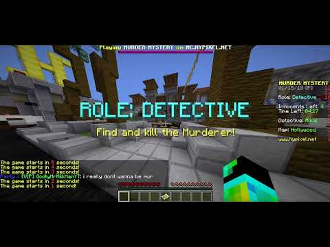 Murder Mystery In EmzyPlaysMC's Party | DETECTIVE
