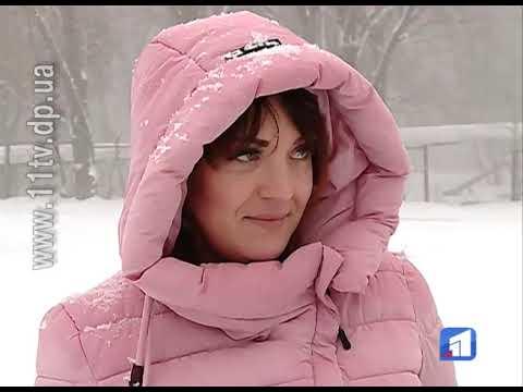 Новости 11 канал: Півтори тисячі гривень — за розкидані по вулиці відходи улюбленця
