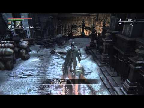 My Bloodborne Build/Introductions