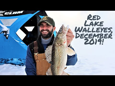 Red Lake Walleyes ((EARLY ICE))