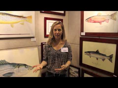 The World Fishing & Outdoor Expo - Suffern Show 2013
