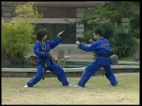 [Kung Fu] Стиль змеи Шэсинцюань (蛇風格). Part  6