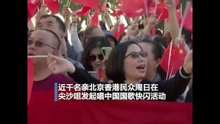香港亲北京支持者举行快闪活动 反催泪弹市民参与亲子游行