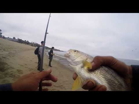 Slay Day Dana Point Surf Fishing