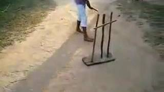 Great cricket play by dog